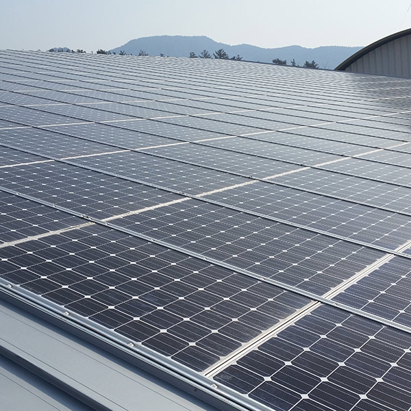 Energy: China is a leader in solar power generation